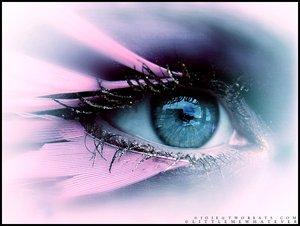 umělecké oko